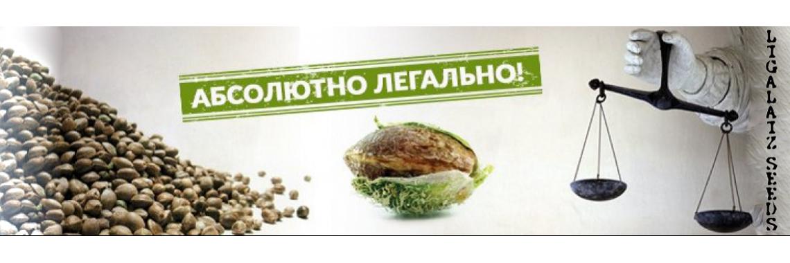 Сайт семян